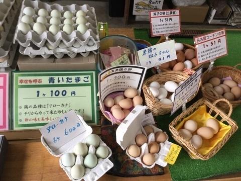 五泉市産みたて卵のキムラファーム色とりどりの卵