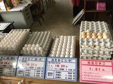 五泉市産みたて卵のキムラファーム白たまご