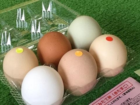 五泉市産みたて卵のキムラファーム食べ比べ